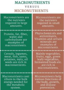 15 Differences Between Macro Nutrients And Micro Nutrients Public Health Notes
